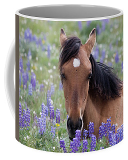 Wild Horse Among Lupines Coffee Mug