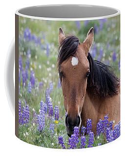 Wild Horse Among Lupines Coffee Mug
