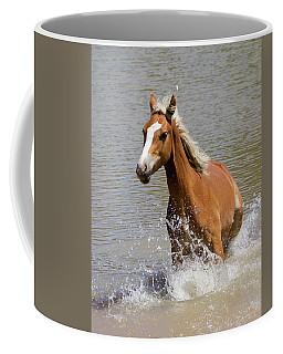 Wild Horse Splashing At The Water Hole Coffee Mug