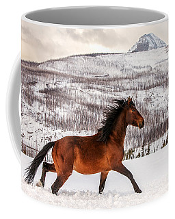Wild Horse Coffee Mug by Todd Klassy