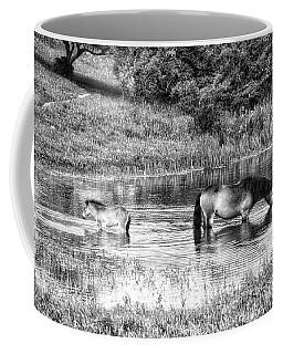 Wild Horses Bw2 Coffee Mug