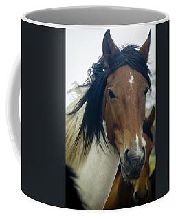 Coffee Mug featuring the photograph Wild Horses Of Nevada 1 by Catherine Sobredo