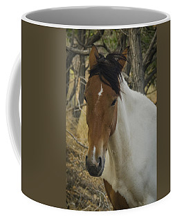 Coffee Mug featuring the photograph Wild Horses Of Nevada 3 by Catherine Sobredo
