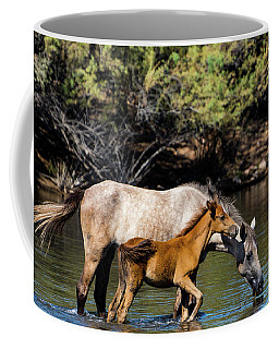 Wild Horses On The Salt River Coffee Mug