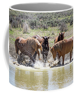 Wild Mustang Stallions Playing In The Water - Sand Wash Basin Coffee Mug