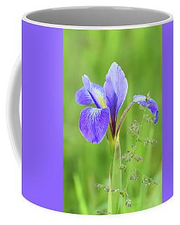 Coffee Mug featuring the photograph Wild Iris by Sally Sperry