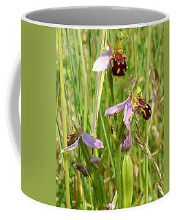 Wild Meadow Bee Orchids Coffee Mug