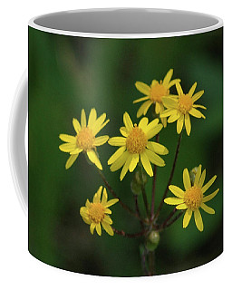 Coffee Mug featuring the photograph Wild Meadow Daisies by LeeAnn McLaneGoetz McLaneGoetzStudioLLCcom