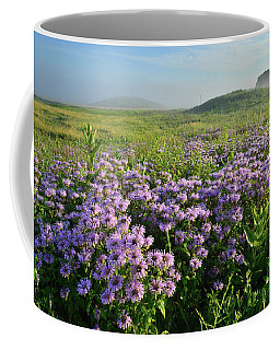 Wild Mints Galore In Glacial Park Coffee Mug