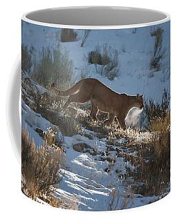 Wild Mountain Lion Running At First Light Coffee Mug