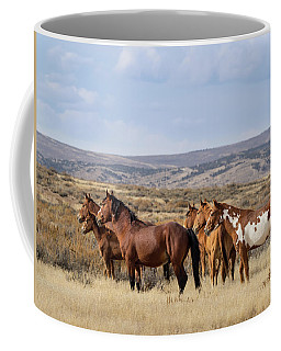 Wild Mustang Family Band In Sand Wash Basin Coffee Mug
