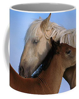 Coffee Mug featuring the photograph Wild Mustang Filly And Foal by Yva Momatiuk and John Eastcott