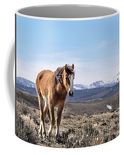 Wild Mustang Filly Of Sand Wash Basin Coffee Mug