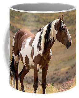 Coffee Mug featuring the photograph Wild Mustang Stallion Picasso Of Sand Wash Basin by Nadja Rider