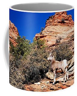 Wild Ram At Zion Coffee Mug