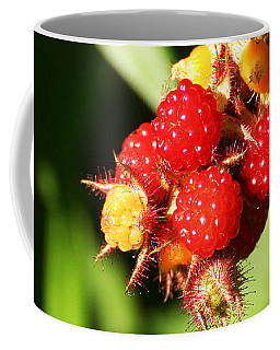 Coffee Mug featuring the photograph Wild Raspberries by William Selander