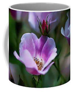 Wild Rose 7 Coffee Mug