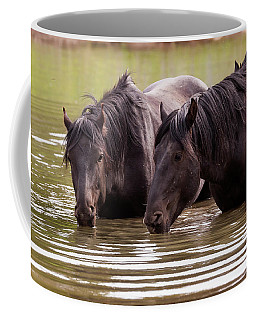 Wild Stallions At The Water Hole Coffee Mug