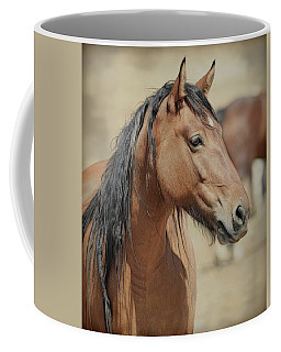 Coffee Mug featuring the photograph Wild Stud by Steve McKinzie