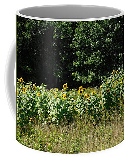 Wild Sunflowers Coffee Mug