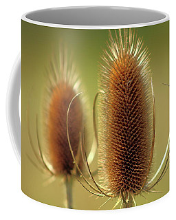 Wild Teasel Coffee Mug