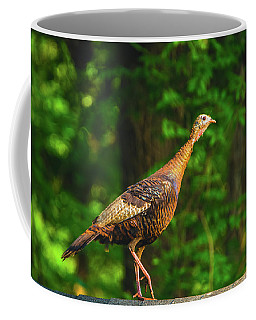 Wild Turkey Profile On Rooftop Coffee Mug