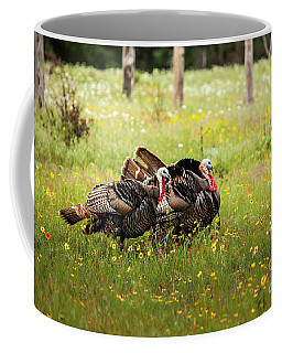 Wild Turkey's Dance Coffee Mug by Iris Greenwell
