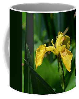 Wild Yellow Iris Coffee Mug