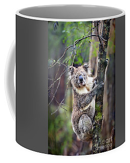 Wildest Dreams Coffee Mug