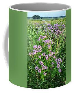 Wildflower Bouquet In Glacial Park Coffee Mug