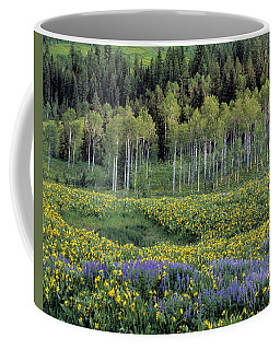 Wildflower Meadow Coffee Mug by Leland D Howard