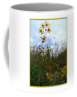 Coffee Mug featuring the photograph Wildflowers And Mentor Marsh by Joan  Minchak