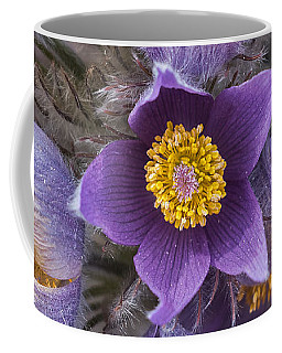 Wildflowers At The Delta Junction Bison Range Coffee Mug