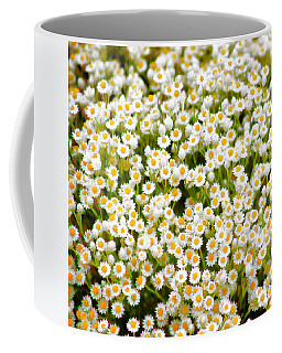 Coffee Mug featuring the photograph Wildflowers by Holly Kempe