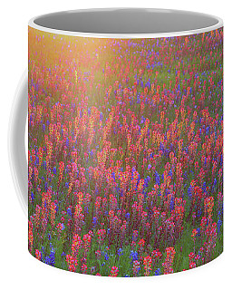 Coffee Mug featuring the photograph Wildflowers In Texas by Robert Bellomy