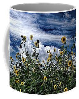 Wildflowers On The Brazos Coffee Mug