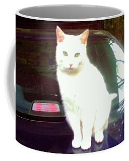 Will Wash Car For Treats Coffee Mug