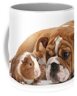 Will You Be My Friend? Coffee Mug