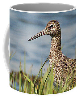 Willet In The Grass Coffee Mug