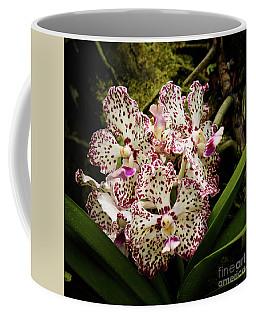 William And Catherine Coffee Mug
