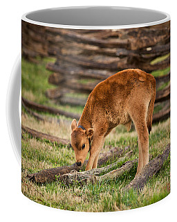Williamsburg Calf Coffee Mug