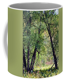 Willow Cathedral Coffee Mug