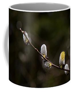 Willow Catkin Coffee Mug