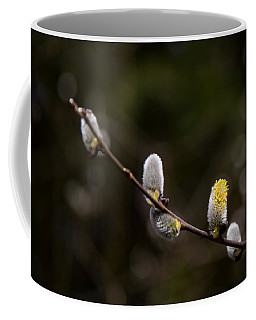 Willow Catkin Coffee Mug
