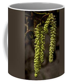 Willow Catkins Coffee Mug by Keith Elliott