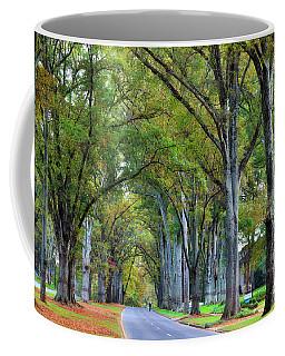Willow Oak Trees Coffee Mug
