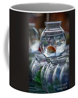 Win A Goldfish Coffee Mug
