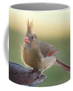 Coffee Mug featuring the photograph Wind Blown Cardinal  by Terry DeLuco