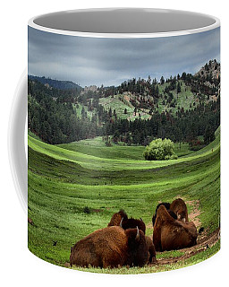 Wind Cave Bison Coffee Mug