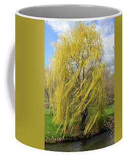 Coffee Mug featuring the photograph Wind In The Willow by Viviana  Nadowski